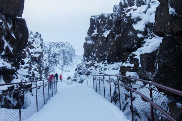 Islande - Thingvellir_IMG_1749