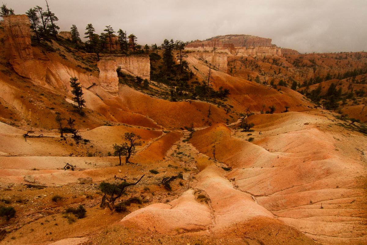 Bryce Canyon_IMG_9072