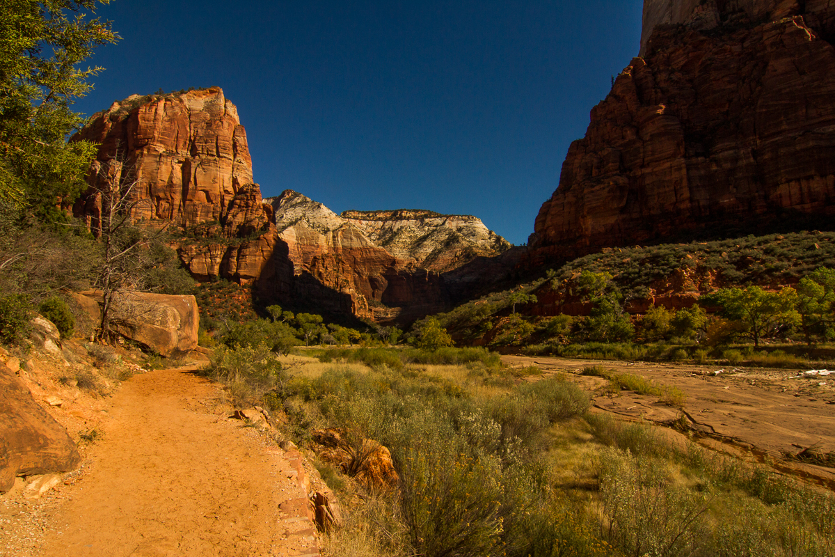 Zion_IMG_9112