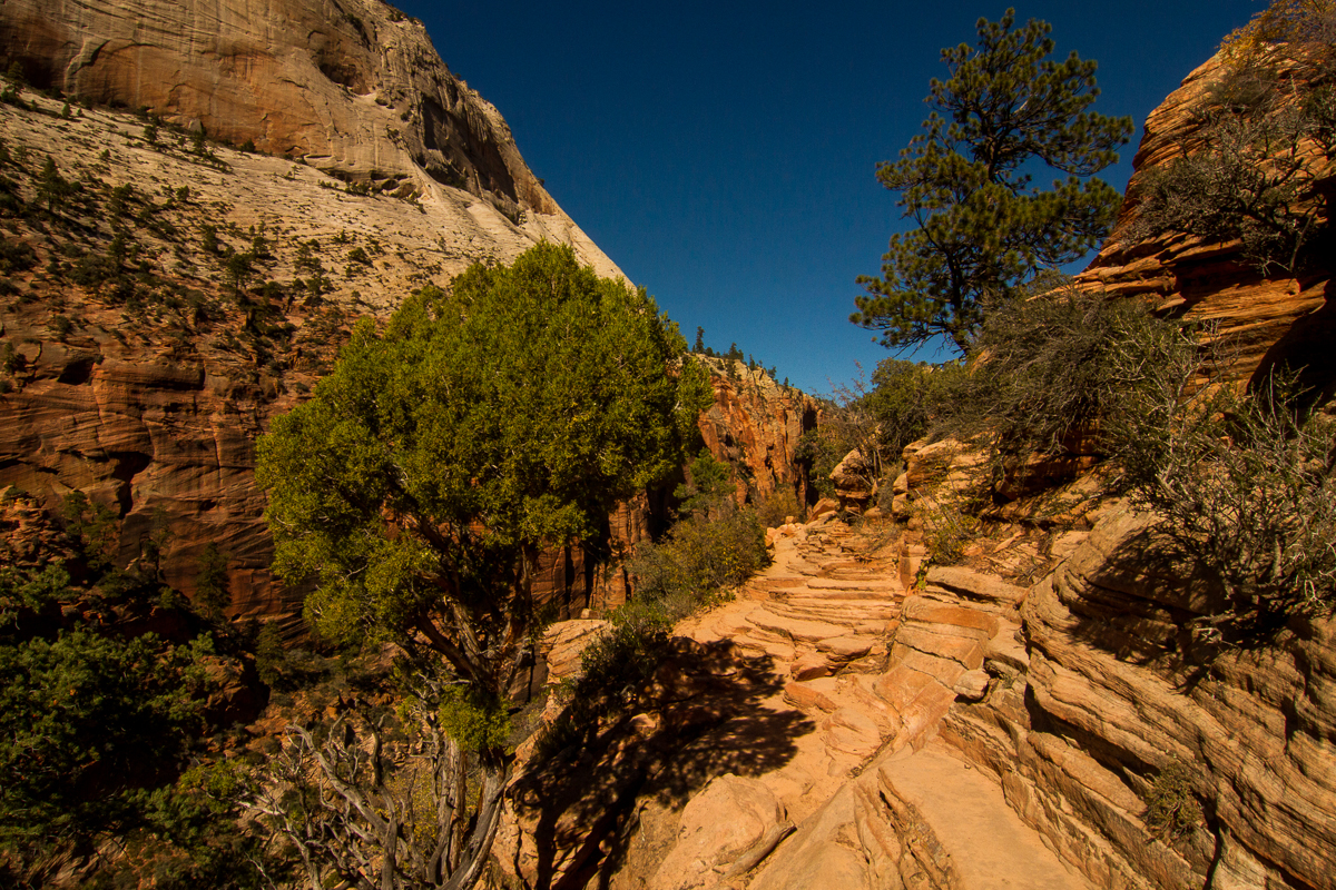 Zion_IMG_9162