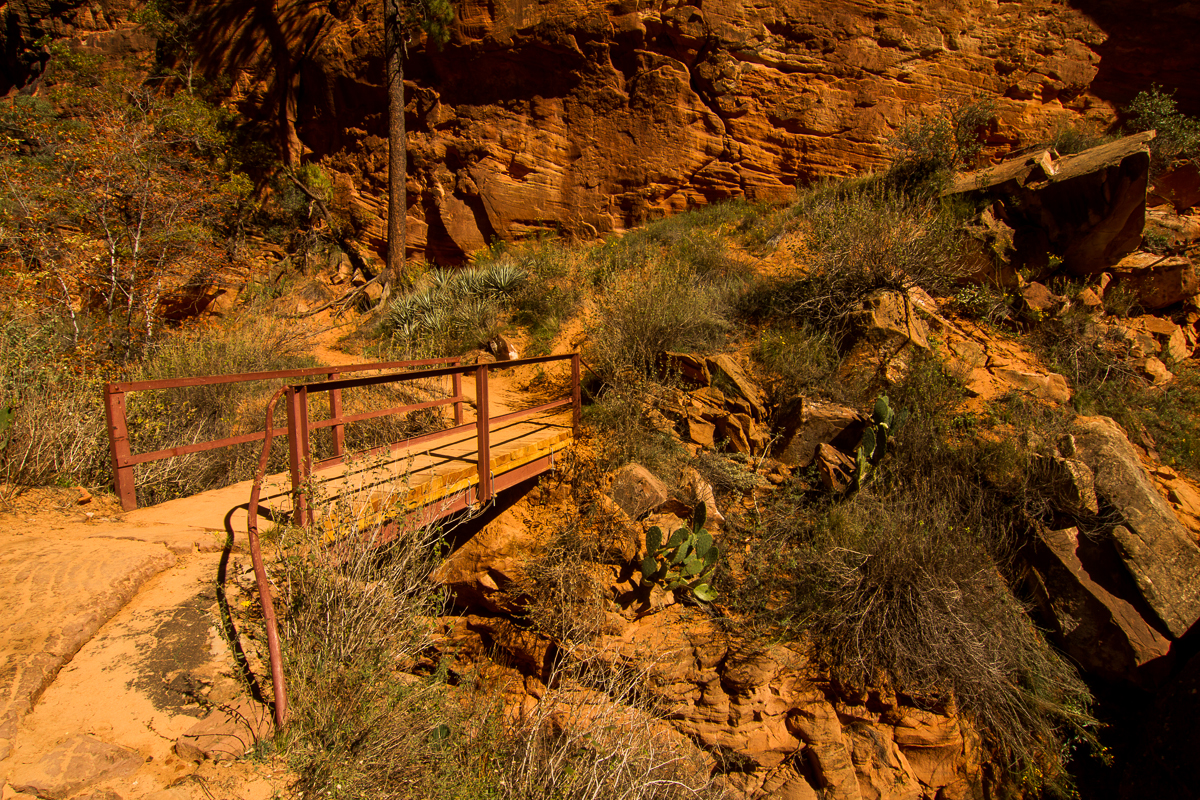 Zion_IMG_9198